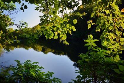 9時間ドライブの先は長野県北部.........先ずは白馬村へと.........栂池自然園は紅葉のピーク.........._b0194185_17491457.jpg