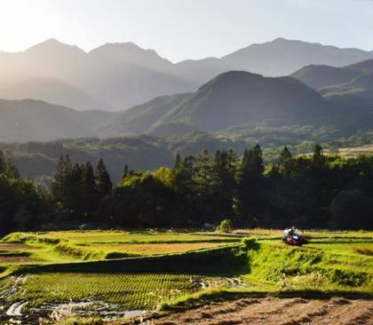 9時間ドライブの先は長野県北部.........先ずは白馬村へと.........栂池自然園は紅葉のピーク.........._b0194185_17493538.jpg