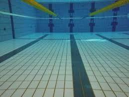 自然な泳ぎの矯正㉙潜水キック_d0358103_17493933.jpg