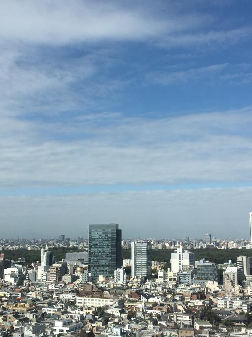 東京からおはよう〜〜ございます🌸_c0162404_09473829.jpg