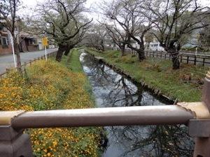 川越遠足_f0101128_09594171.jpg