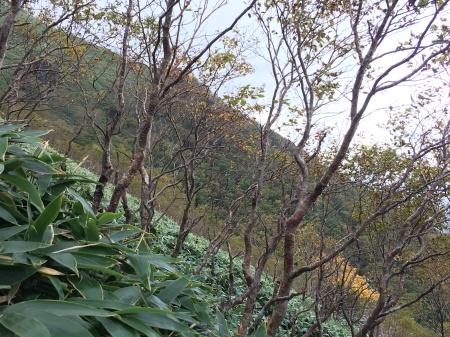 10月10日(木)朝の気温6℃_c0089831_21053771.jpeg