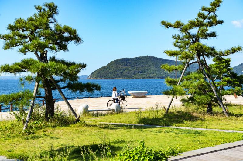 今日もただ何となく撮ってしまう海岸散歩の写真です _d0246136_23221886.jpg