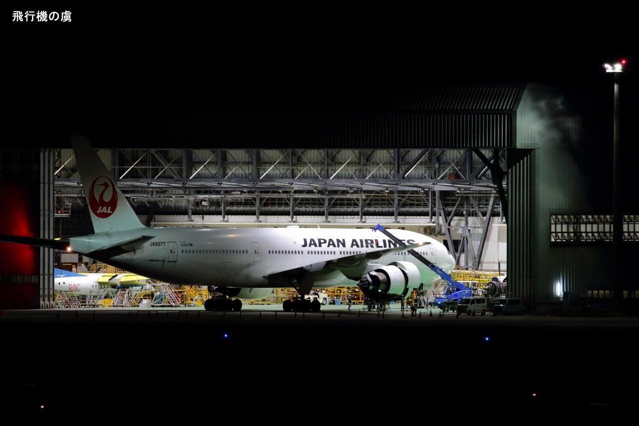 夜間作業  B777  日本航空(JL)_b0313338_11295309.jpg