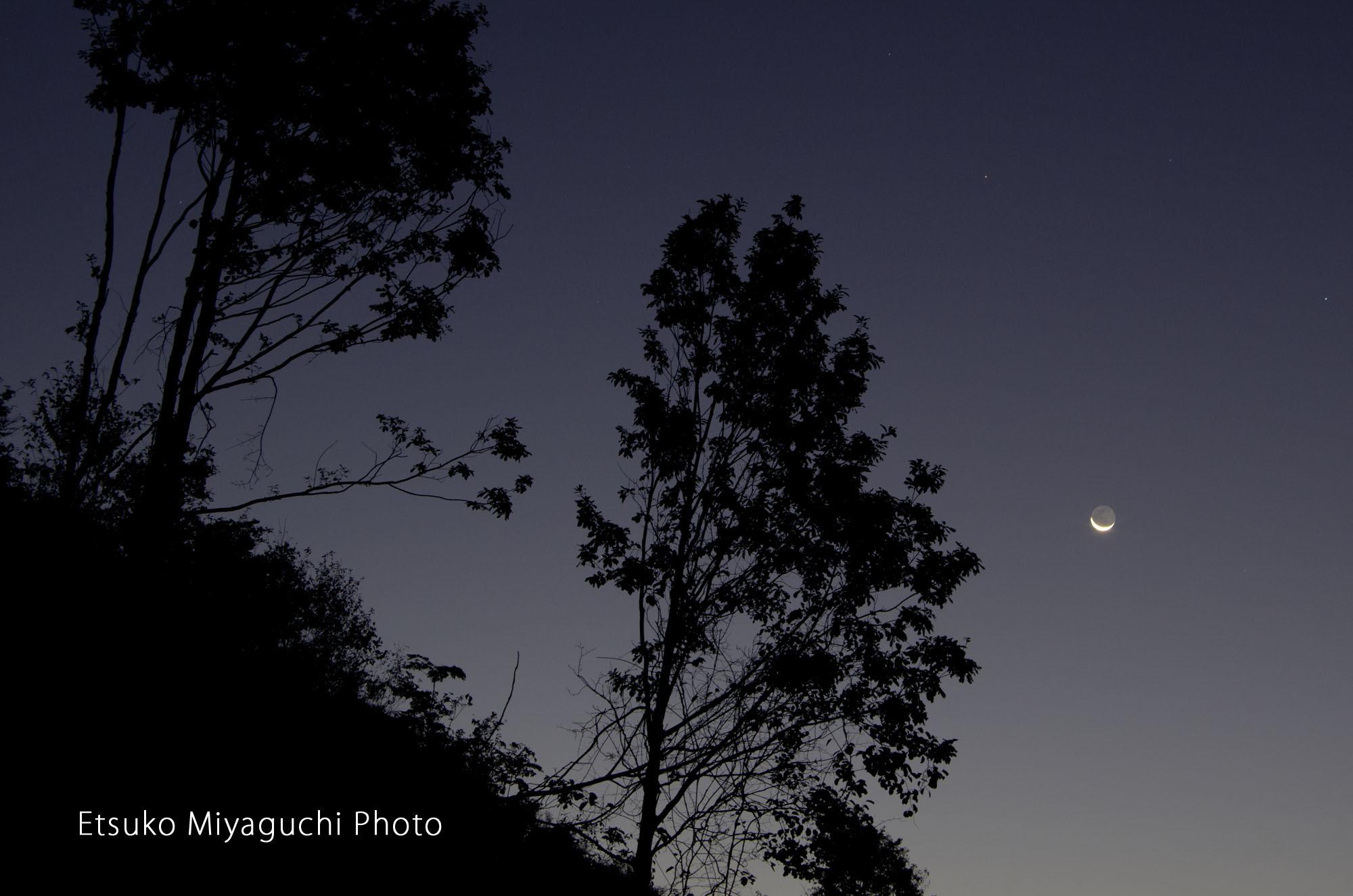 細い月が昇る朝_f0152939_04514408.jpg
