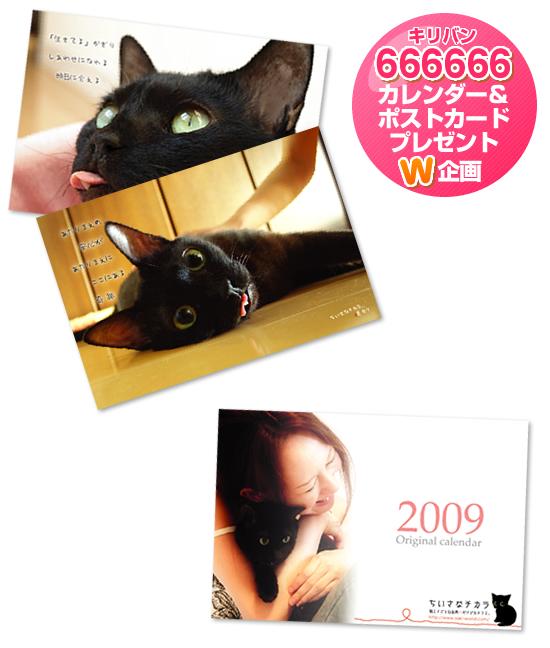 【プレゼント】キリバン666666企画!!_a0389088_17205306.jpg