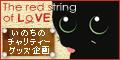 猫同士の絆_a0389088_17262051.jpg