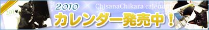 空の色 猫の瞳_a0389088_17265768.jpg