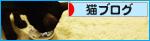 生まれたトコロに還る日を(検査の結果)_a0389088_17275271.jpg