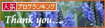 春を待つ猫_a0389088_17284635.jpg