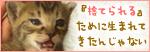 おっぱい探して…(生後2週間の子猫・家族募集)_a0389088_17303510.jpg
