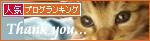 おっぱい探して…(生後2週間の子猫・家族募集)_a0389088_17303515.jpg