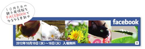 子猫と人と(NHK福祉ポータル「ハートネット」更新)_a0389088_17404681.jpg