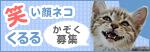 「くるる」も「ヒヨ」も成長中♪_a0389088_17460931.jpg