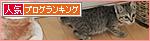 笑い顔猫「くるる」の大冒険_a0389088_17460939.jpg