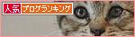 子猫の「ハイポーズ」♪_a0389088_17461339.jpg