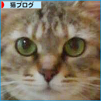 東京でも元気です!_a0389088_18131132.jpg