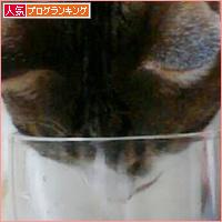 東京でも元気です!_a0389088_18131171.jpg