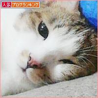 大阪弁のかんみさん?_a0389088_18133112.jpg