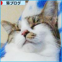 大阪弁のかんみさん?_a0389088_18133142.jpg