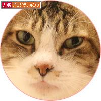 男気がモテる理由_a0389088_18152417.jpg