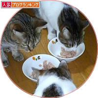 東京からのしあわせ便り_a0389088_18183408.jpg