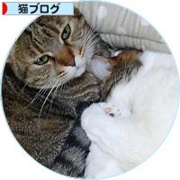 東京からのしあわせ便り_a0389088_18183494.jpg
