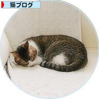 平和という名の猫_a0389088_18193342.jpg