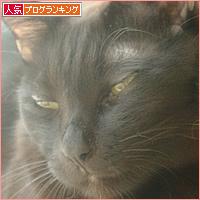 世界猫の日_a0389088_18234481.jpg