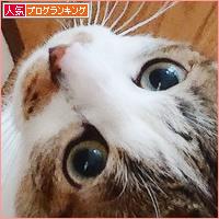 お江戸便り_a0389088_18240248.jpg