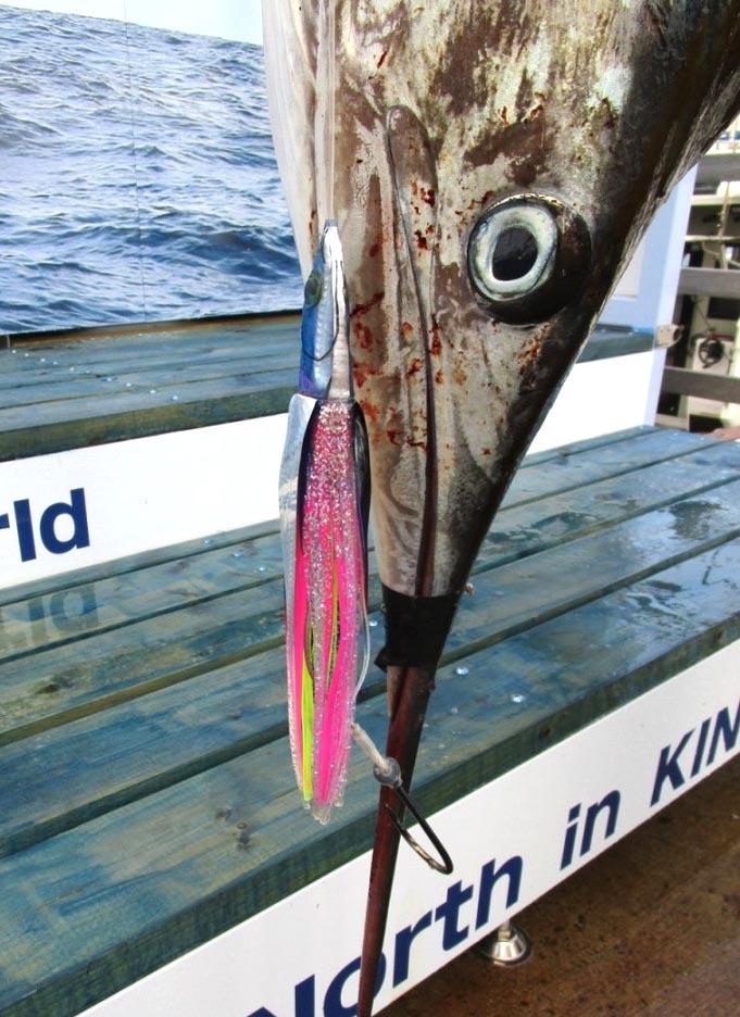 秋刀魚定食残りわずかとなりました。_f0009039_16485896.jpg