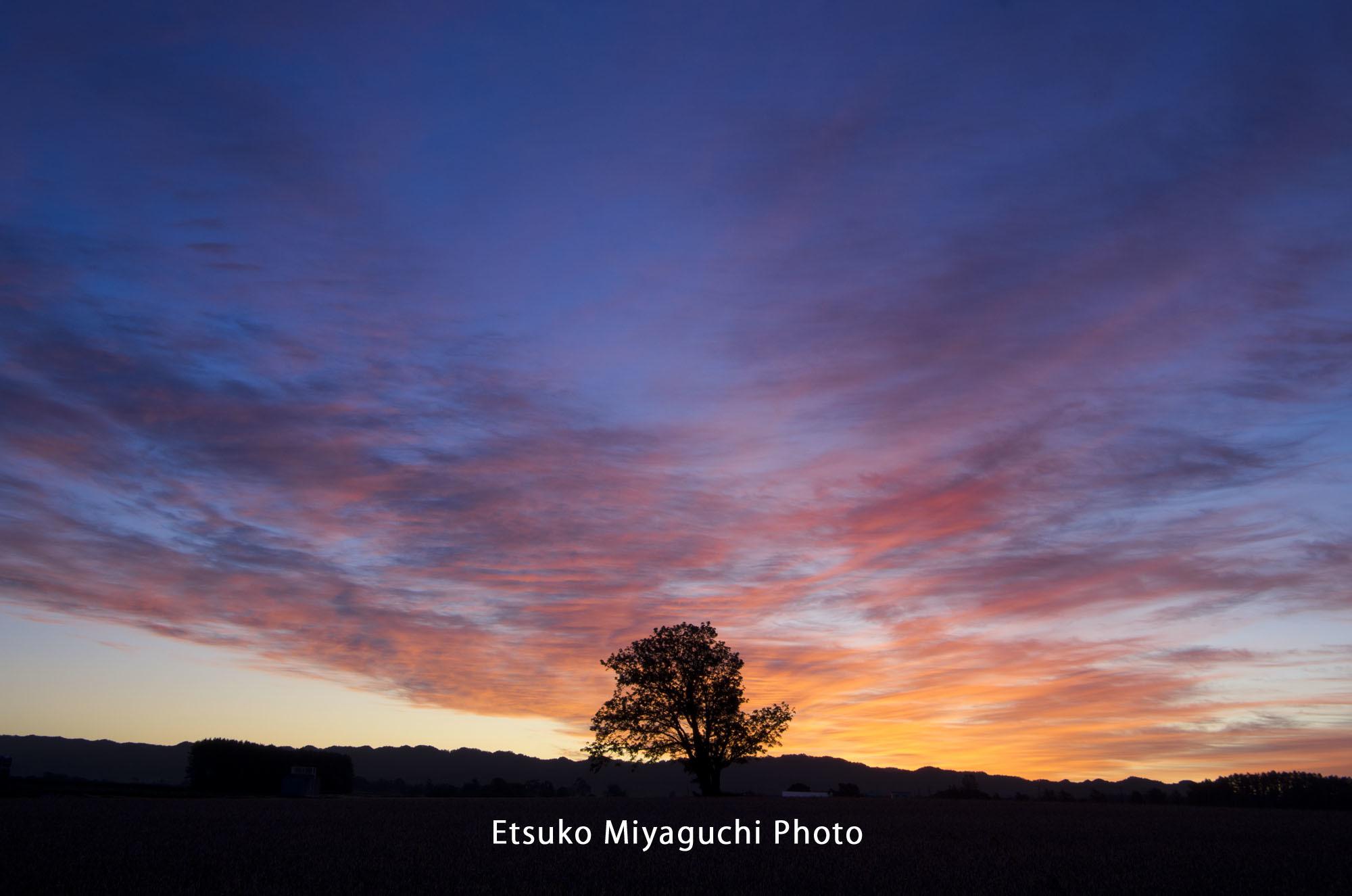 秋の空はドラマチック_f0152939_17513534.jpg