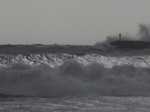 台風襲来_f0305844_12011558.jpg