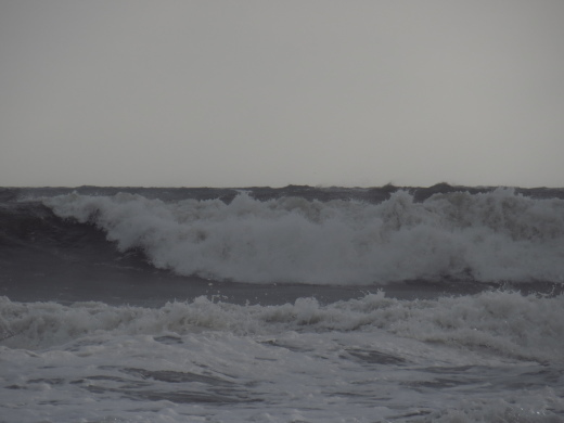 台風襲来_f0305844_12021148.jpg