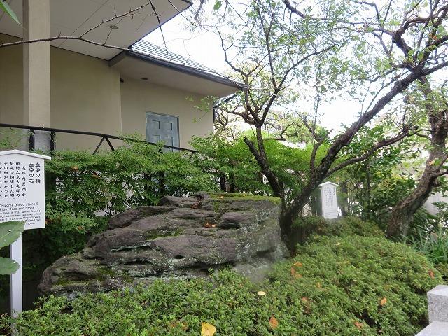 泉 岳 寺(新江戸百景めぐり㊷)_c0187004_11151224.jpg