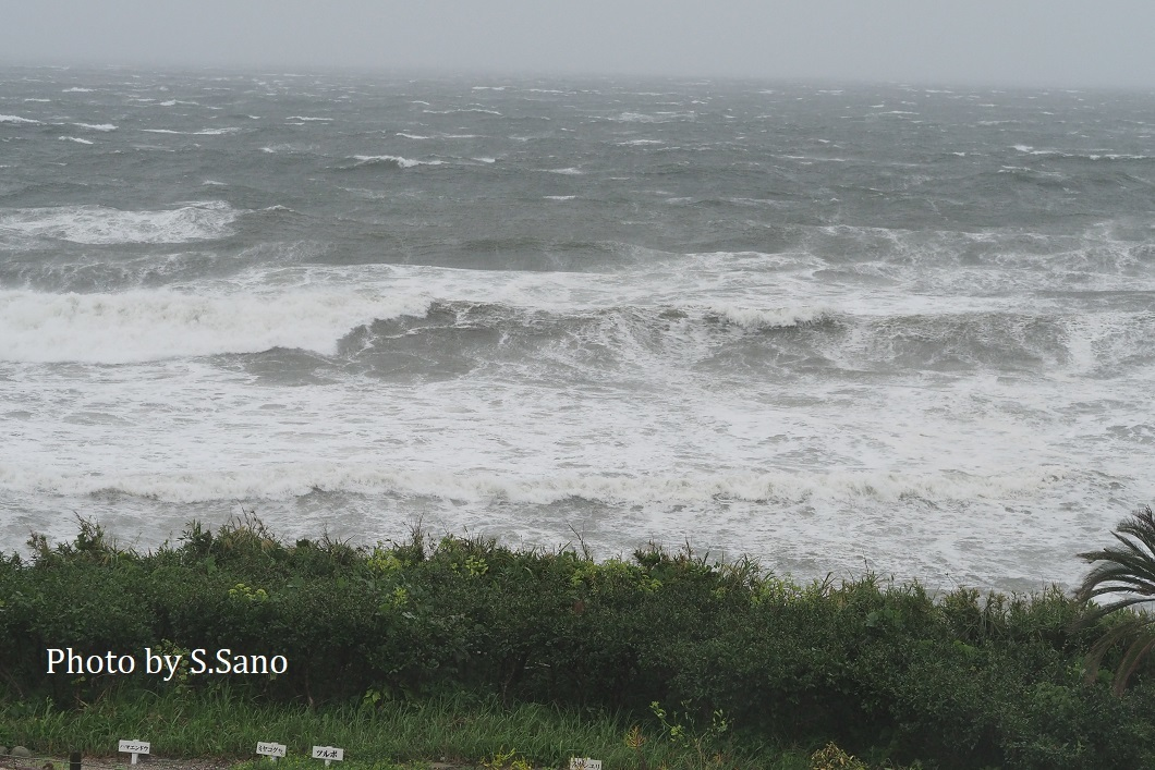台風19号迫る!_b0348205_22360005.jpg