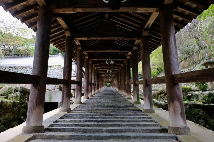 奈良の旅 \'19_e0000910_18021063.jpg