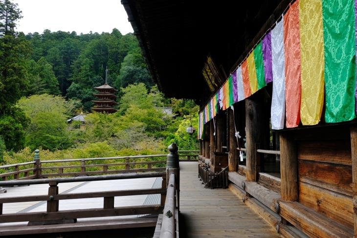 奈良の旅 \'19_e0000910_18042752.jpg