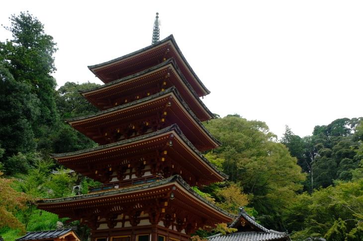 奈良の旅 \'19_e0000910_18061045.jpg