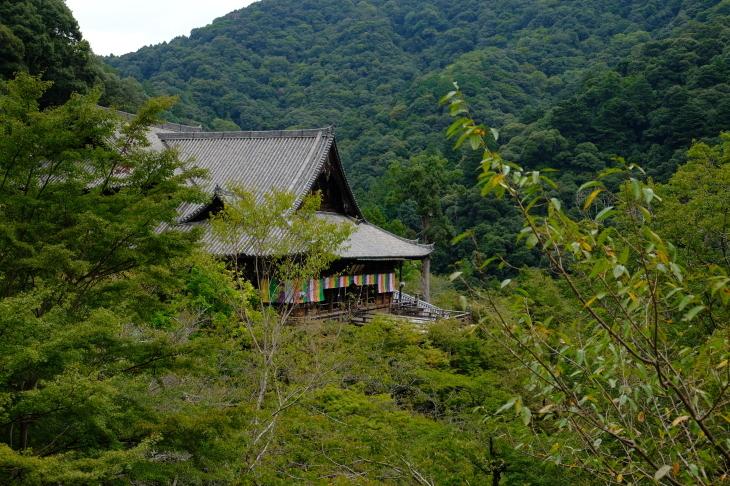奈良の旅 \'19_e0000910_18083063.jpg