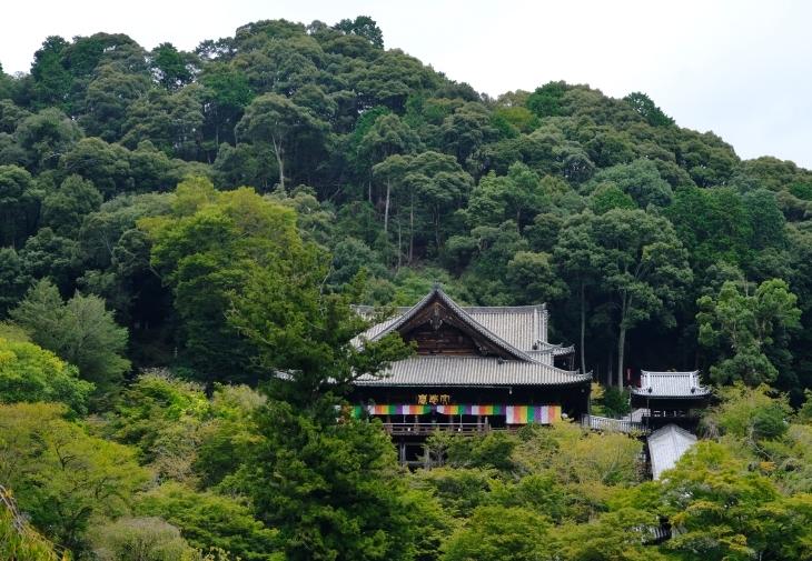 奈良の旅 \'19_e0000910_18111732.jpg