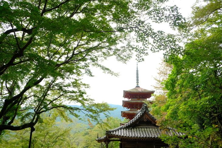 奈良の旅 \'19_e0000910_18112721.jpg