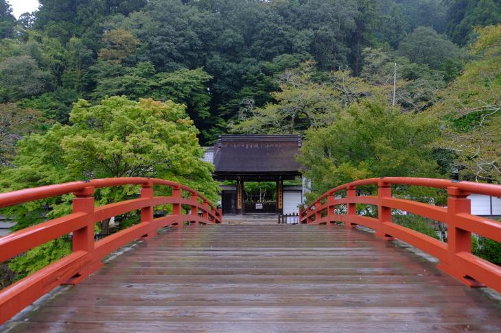奈良の旅 \'19_e0000910_18275603.jpg