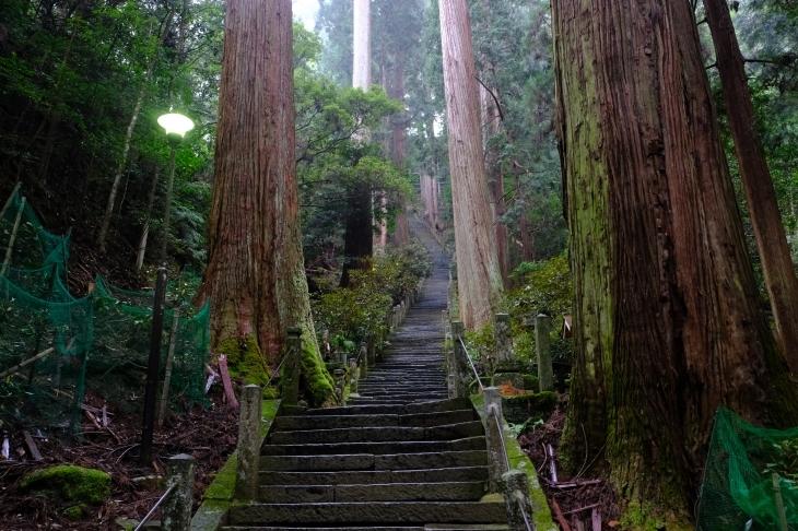 奈良の旅 \'19_e0000910_18505879.jpg