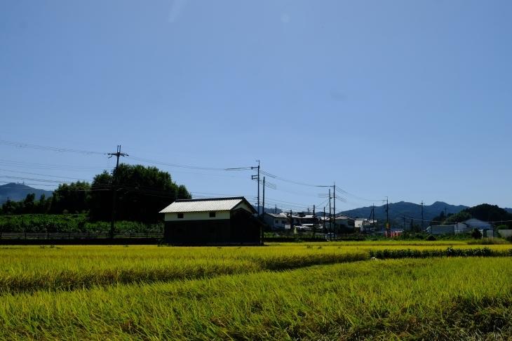 奈良の旅 \'19_e0000910_19553404.jpg