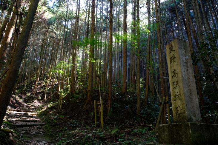 奈良の旅 \'19_e0000910_19582605.jpg