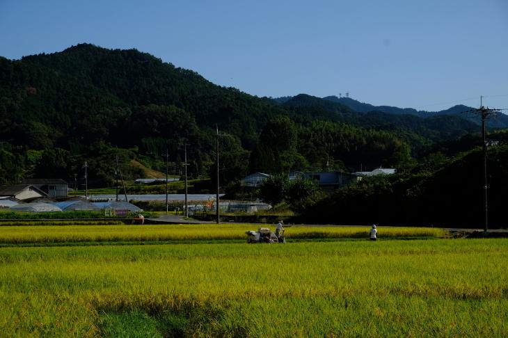 奈良の旅 \'19_e0000910_20031144.jpg