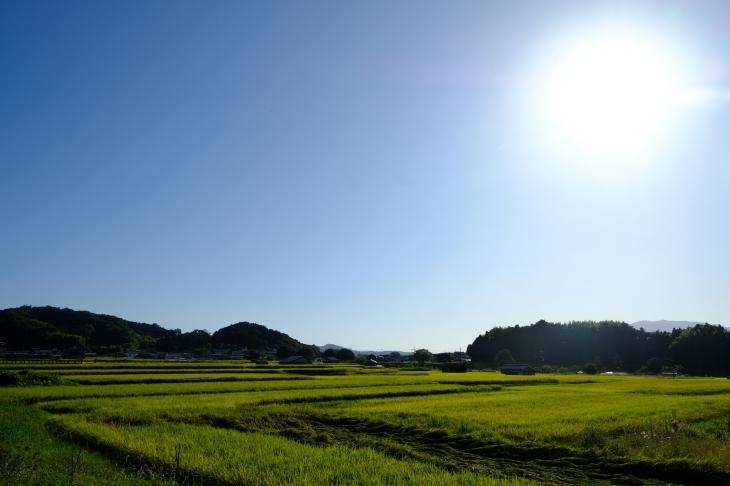 奈良の旅 \'19_e0000910_20052077.jpg