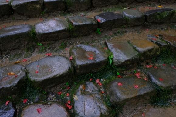 奈良の旅 \'19_e0000910_22080861.jpg