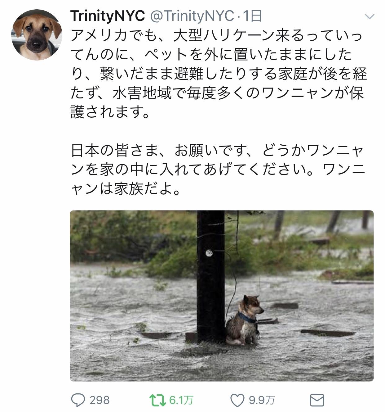 台風19号「命を守るための行動」記録。_f0115311_11083074.jpeg
